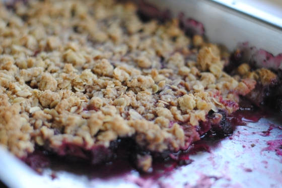 rhubarb strawberry blueberry crisp