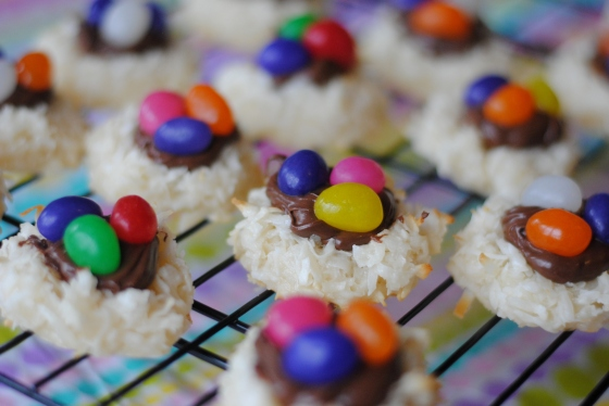 coconut bird nests